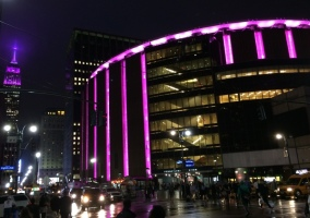 MSG PINK